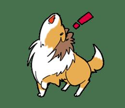 Cute sheltie sticker #5161822