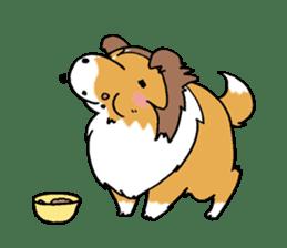 Cute sheltie sticker #5161830