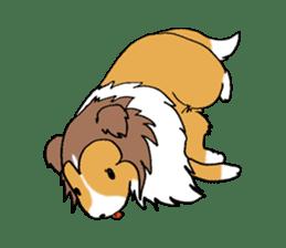 Cute sheltie sticker #5161837