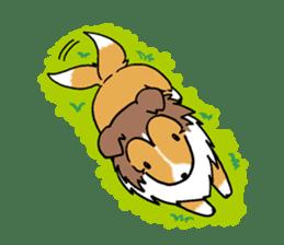 Cute sheltie sticker #5161840