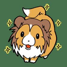 Cute sheltie sticker #5161847
