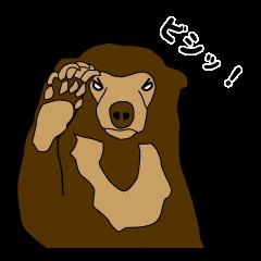 KumaGoro of Sun bear