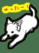 Chihuahua days sticker #5178892