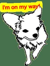 Chihuahua days sticker #5178893