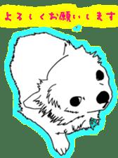 Chihuahua days sticker #5178897