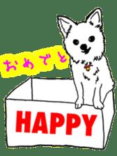 Chihuahua days sticker #5178902