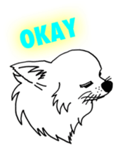 Chihuahua days sticker #5178908