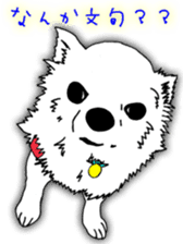 Chihuahua days sticker #5178919