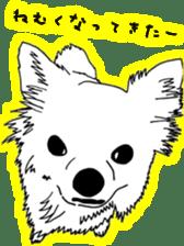 Chihuahua days sticker #5178923