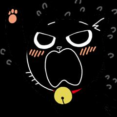 Black Cat 'Tama'