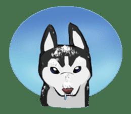 Cat&dog&ferret sticker #5208703