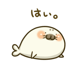 Cute Baby Harbor seal 2!! sticker #5211938