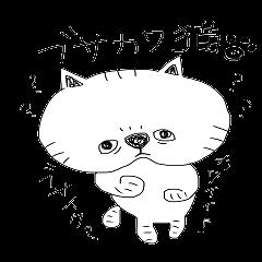busakawa cat