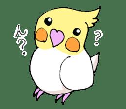 shiro parakeet sticker #5265160