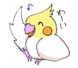 shiro parakeet sticker #5265179