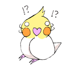 shiro parakeet sticker #5265184