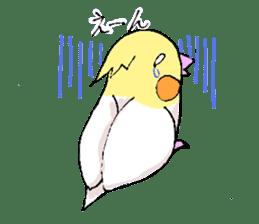 shiro parakeet sticker #5265188