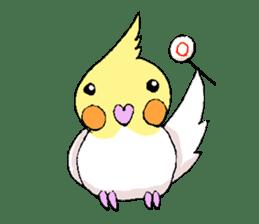 shiro parakeet sticker #5265192