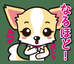 Cute Chihuahuas Aizuchi Stickers sticker #5266362