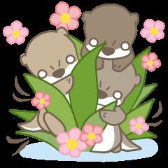 Otter Bros.