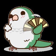Happy Monk parrot