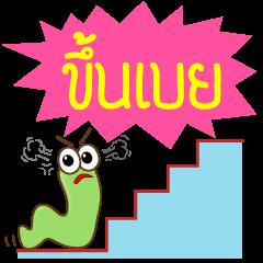 Kum Don : Thai Worm