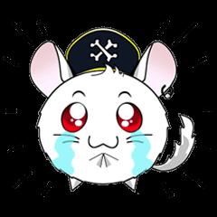 Pirate Chinchilla