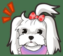 Hi! Maltese sticker #5352957