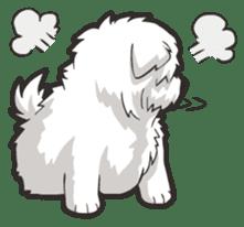 Hi! Maltese sticker #5352973