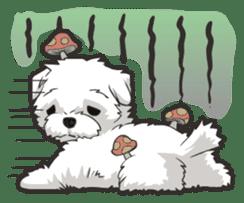 Hi! Maltese sticker #5352976