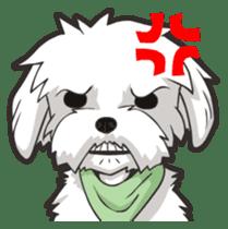 Hi! Maltese sticker #5352979
