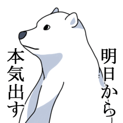Polar bear???