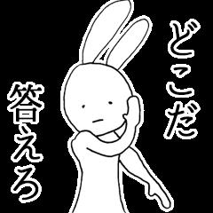 Cool Cool rabbit