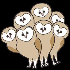 Sticker of owls