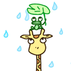 Life of cute giraffe 5th.