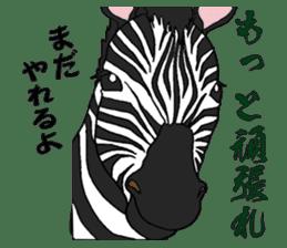 Zebra world sticker #5445917