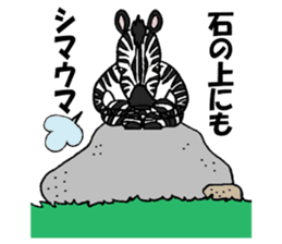 Zebra world sticker #5445924