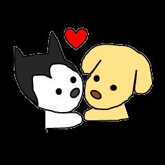 Love Love Lab &Husky