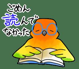 Sun Conure (birds) sticker #5550315