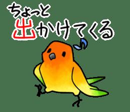 Sun Conure (birds) sticker #5550320