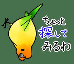 Sun Conure (birds) sticker #5550329