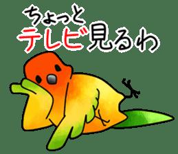 Sun Conure (birds) sticker #5550332
