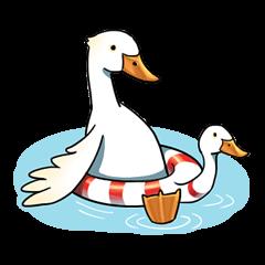 Quack Quack Duck Talk