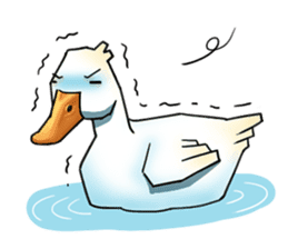Quack Quack Duck Talk sticker #5574864