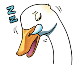 Quack Quack Duck Talk sticker #5574866