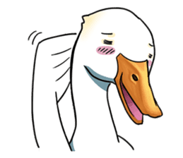 Quack Quack Duck Talk sticker #5574867