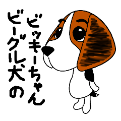 vickie of the beagle