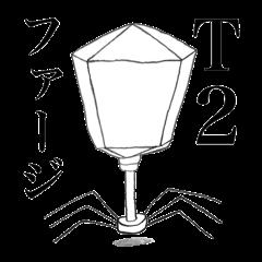 T2Phage