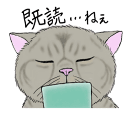 Individual cats sticker #5615892