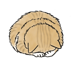 Individual cats sticker #5615901